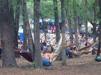 wanee music festival crowd - Wanee Music Festival & One Happy Camper