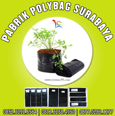 polybag ukuran 40x40,ukuran dan harga polybag,ukuran polybag 10 kg,ukuran polybag besar,ukuran polybag paling besar,ukuran polybag paling kecil,ukuran polybag tanaman,ukuran polybag untuk cabe,ukuran polybag untuk cabe rawit