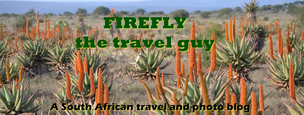 Firefly The Travel Guy