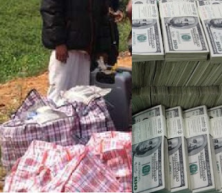 EFCC Uncovers Huge Billions of Looted  Money in Abuja Farm