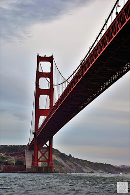 Things To Do in San Francisco | by Life Tastes Good