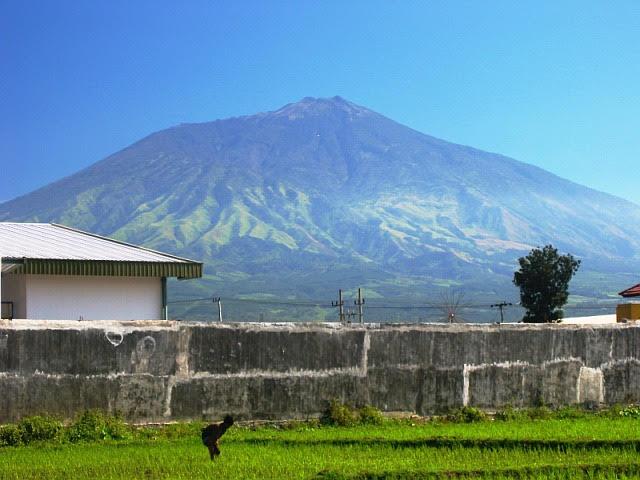 Agrowisata Jeruk sambil menikmati Gunung Arjuno di Malang