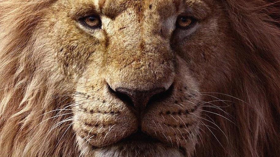 The Lion King 2019 Mufasa 4k Wallpaper 16