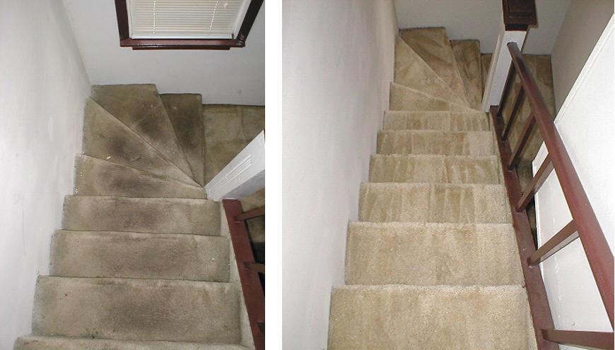 Top Diy Carpet Cleaning Methods Best Solution Ever