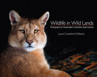 Laura Crawford Williams publica 'Wildlife in Wild Lands: Photography for Conservation in Southern South America'
