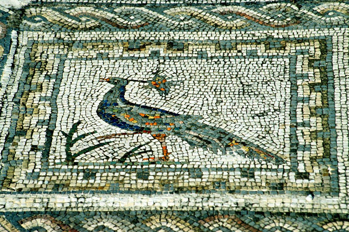 Journeys Amp The Joie De Vivre Ancient Greek Comedy