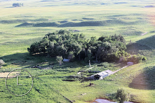 Earth Day 2016, Earth Day, Trees, Circle L Ranch