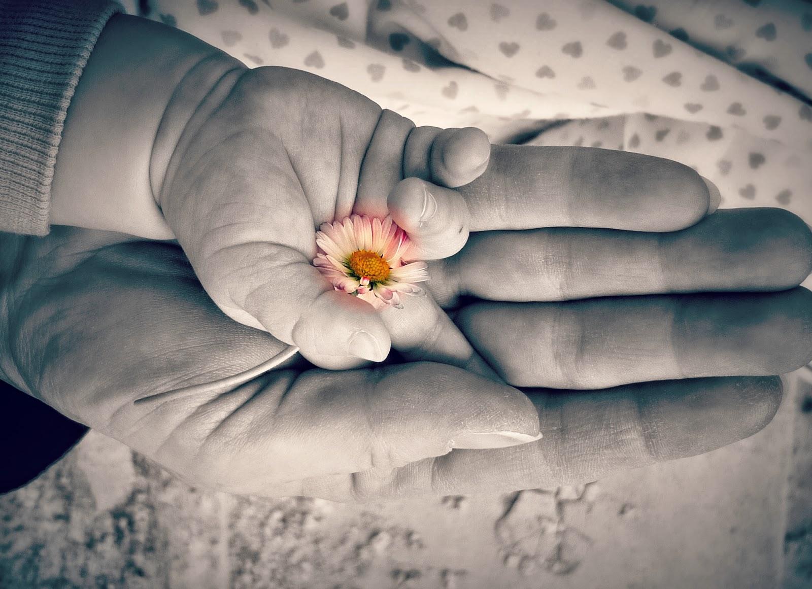 anyák napja, család, családi élet, emlékezés, gyermekkor,