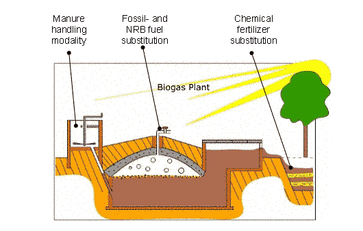 domestic-biogas-plant-construction