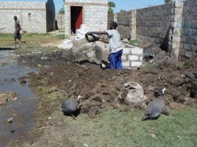 Garden Compound Lusaka Natural Resources