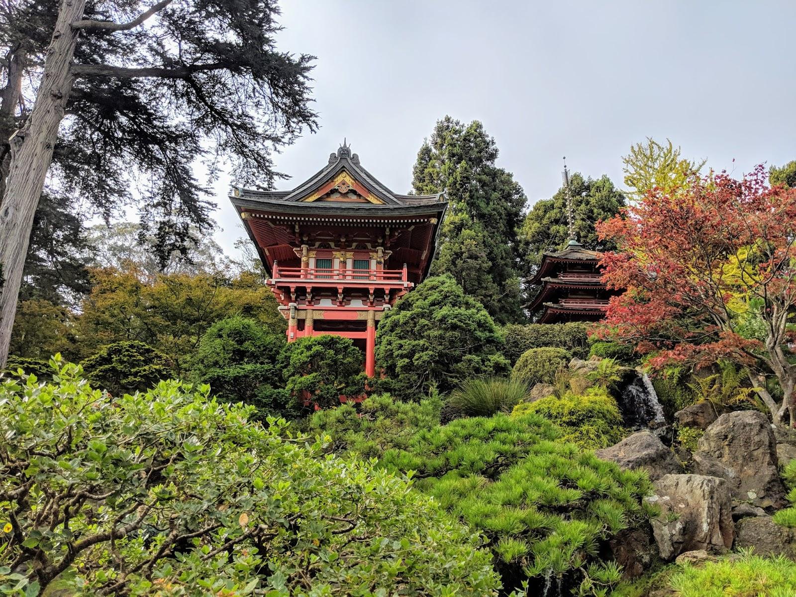 Enjoy Afternoon Tea At The Japanese Tea Garden In San Francisco
