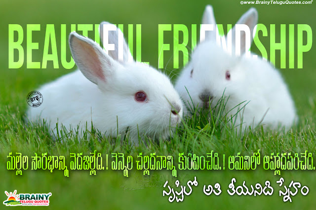 telugu quotes, telugu messages,online telugu friendship quotes hd wallpapers, sweetness of friendship quotes in telugu