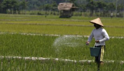 Forum Komunitas dan Pertanian Indonesia