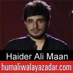 https://www.humaliwalyazadar.com/2018/09/haider-ali-maan-nohay-2019.html