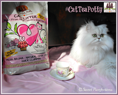 Enjoy an afternoon of tea without the fear of litter box odor