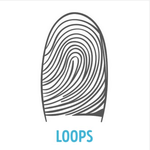 Pola Loops