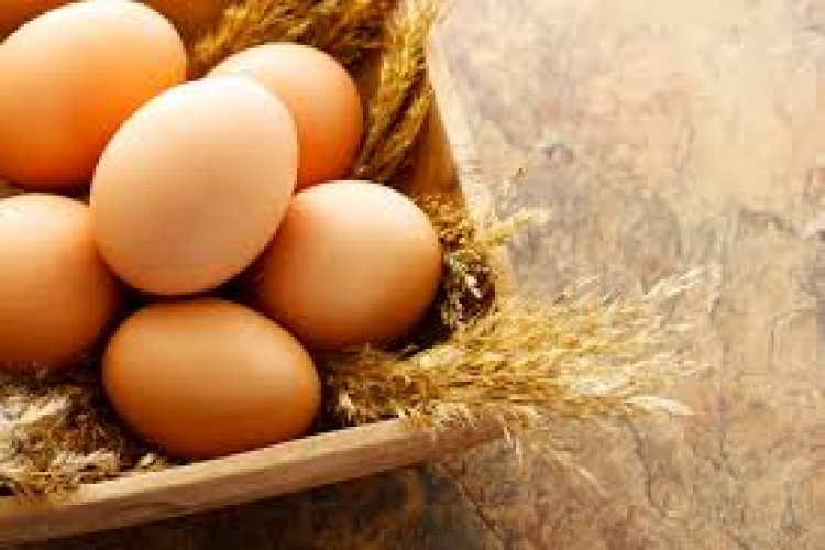 Mengenal Kemeriahan Perayaan Hari Telur Sedunia