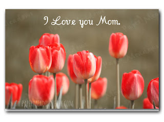 Mother's Day Greeting Card. Printable Greeting Card. You can purchase and download our photography creations and instantly print at home from our Paper Meadows Photography Shop on ETSY. To Visit our shop now click here.