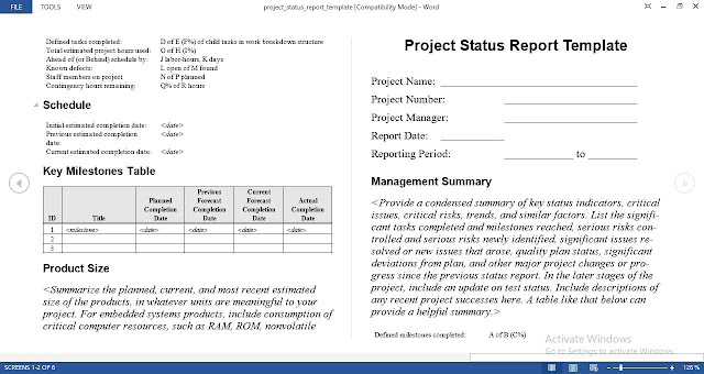 Download Project Status Report Template Free