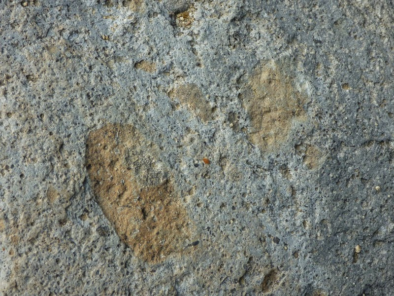 Trailing Ahead: Devastated Area Interpretive Trail in ... Dacite Lava
