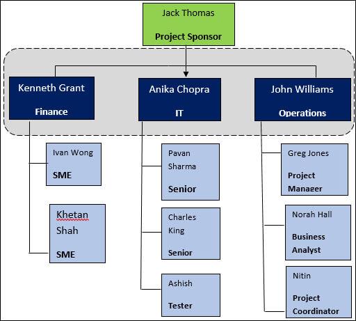Project Team Structure, Project Team Structure Template, project management team structure