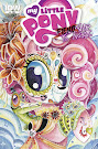 My Little Pony Fiendship is Magic #3 Comic Cover Subscription Variant