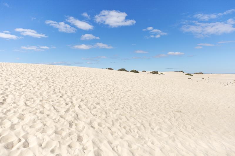 Fuerteventura, Kanariansaaret, Canary Islands, Espanja, Spain, loma, vacation, summer holiday, aurinkoloma, Visualaddict, valokuvaaja, Frida Steiner, outdoorphotography, luonto, luontovalokuva, photographer, visualaddictfrida, nature, meri, saari, ranta, dunes, dyynit