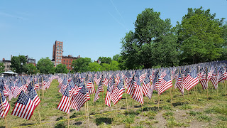 a view of the flag garden