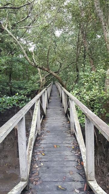 jembatan kayu yang panjang