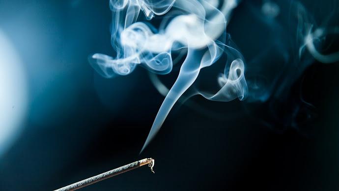 Wallpaper: Aromatic Sticks
