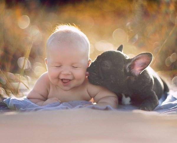 Bunda Jangan Takut Anak Terkena Penyakit Ya, Ternyata Mempunyai Hewan Peliharaan Baik Untuk Tumbuh Kembang Anak