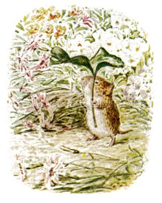 Beatrix Potter The tale of Johnny Town- Mouse 1918