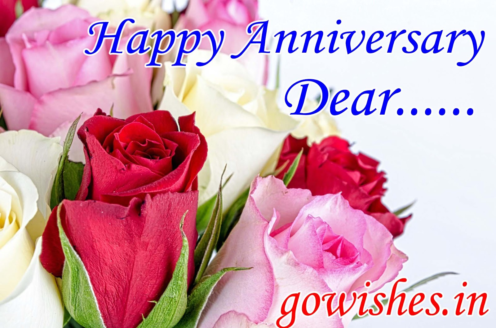 Happy Anniversary Wishes Flowers Photos Quotes Gif