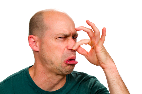 Inhaling Your Partner's Fart Help Combat Diseases/Google