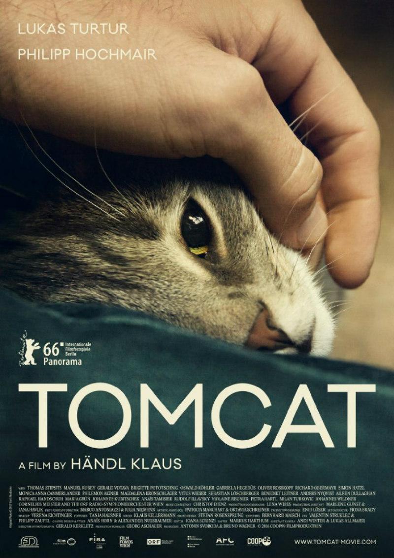 tomcat film poster