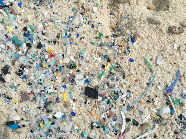 Australian islands home to 414 million pieces of plastic pollution