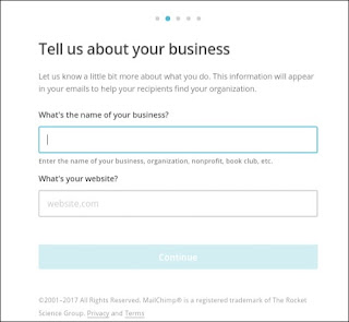 business name and website name for mailChimp account
