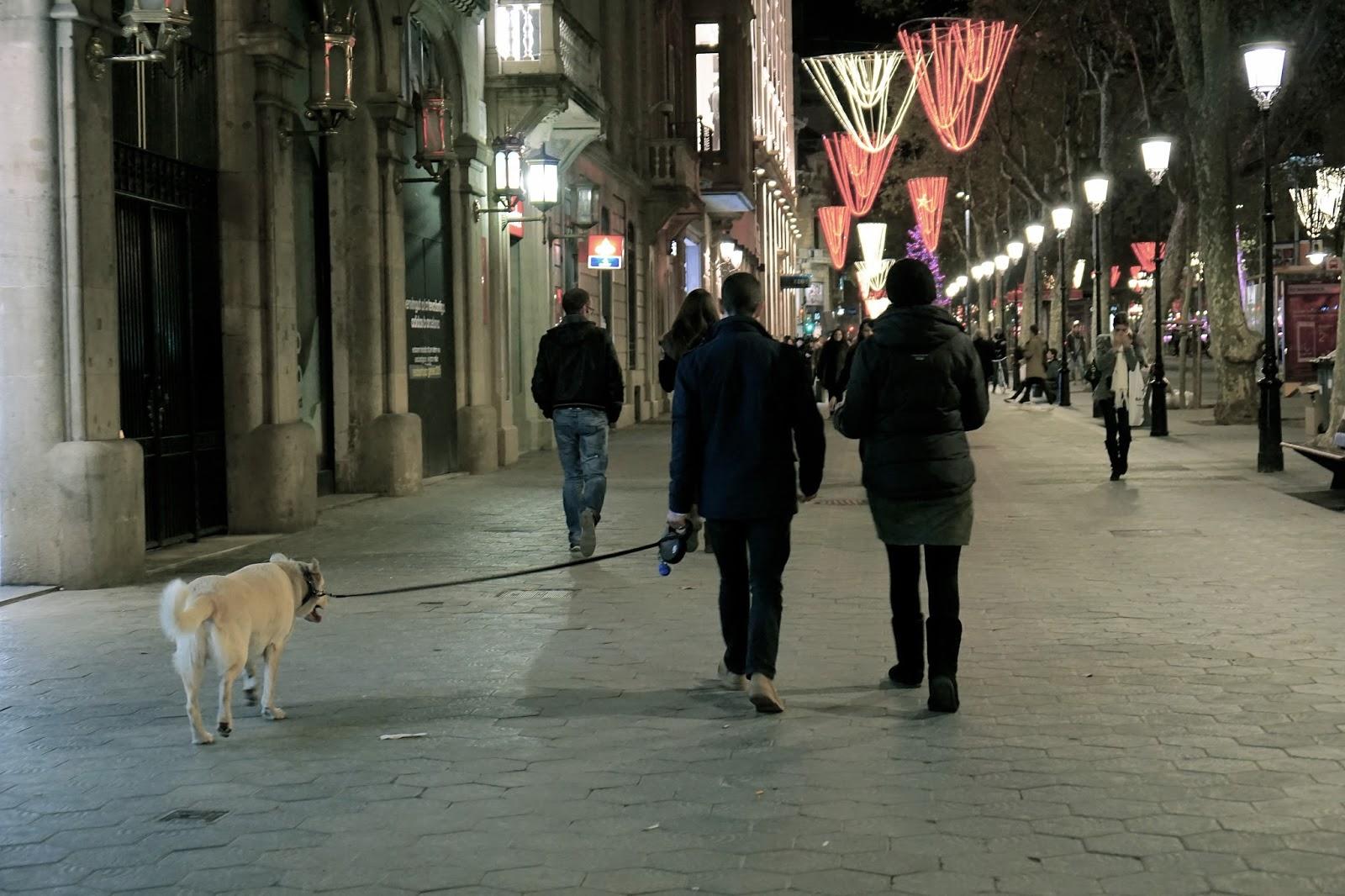 グラシア通り(Passeig de Gracia)