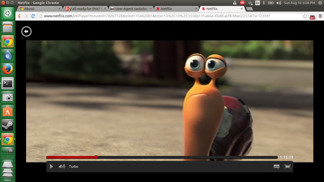 Finally! Get Netflix to work in Ubuntu 14 04 (and Linux) the super