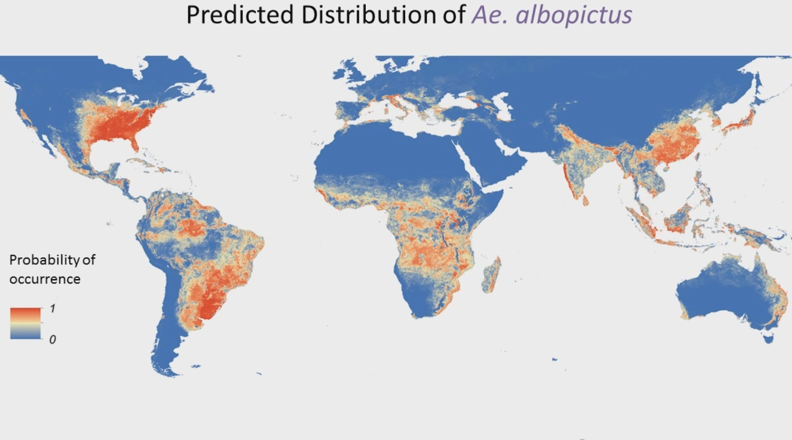 Predicted distribution of Ae. albopictus