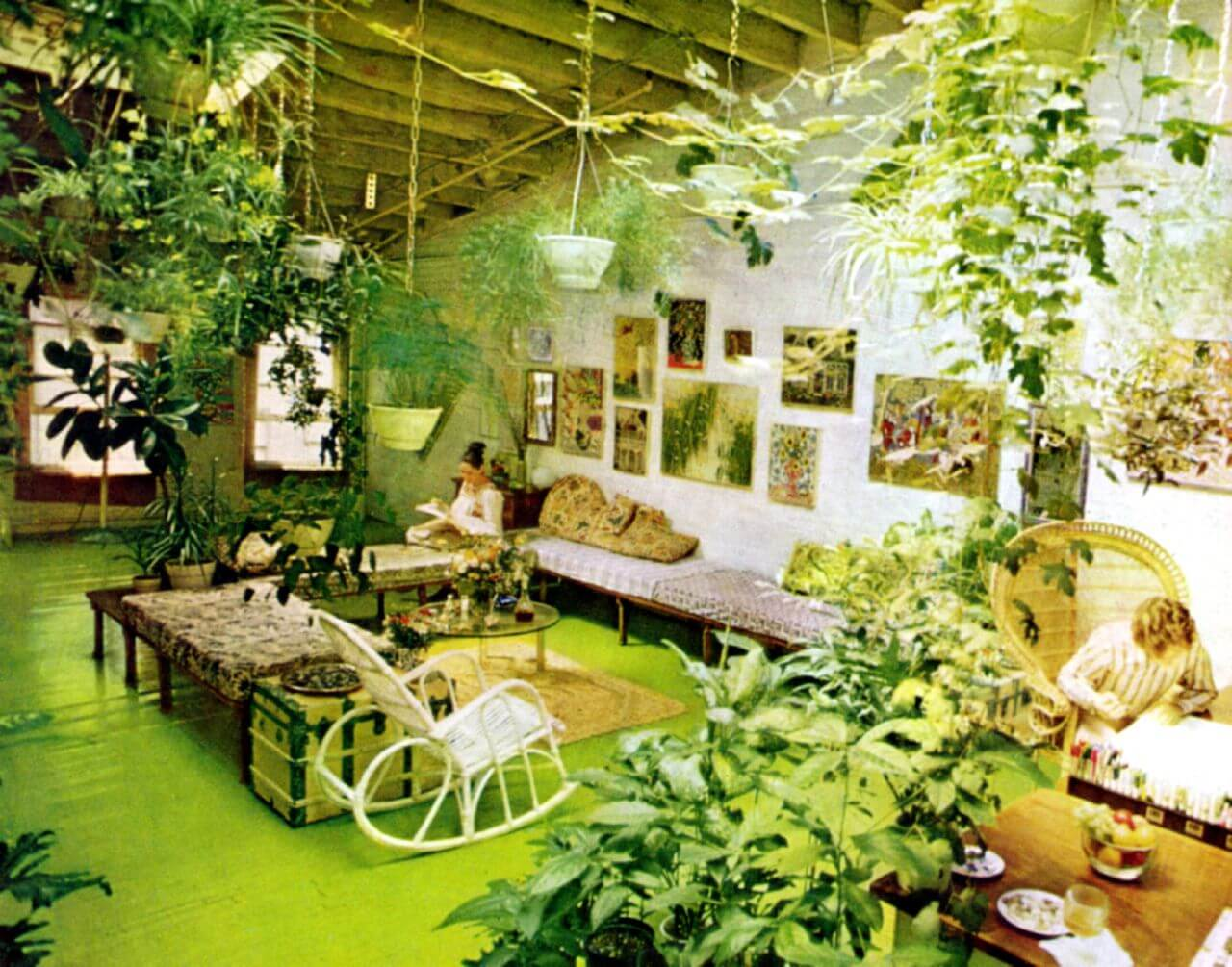 It\'s A Jungle In There: Invasion of the 1970s Houseplants - Go Retro!