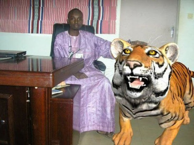 Em vez de usar uma imagem de um tigre real, ele usou um tigre de um videogame