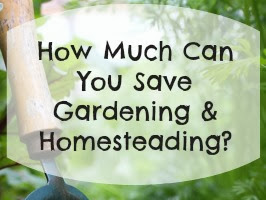 How Much Money Can You Save Gardening and Homesteading?