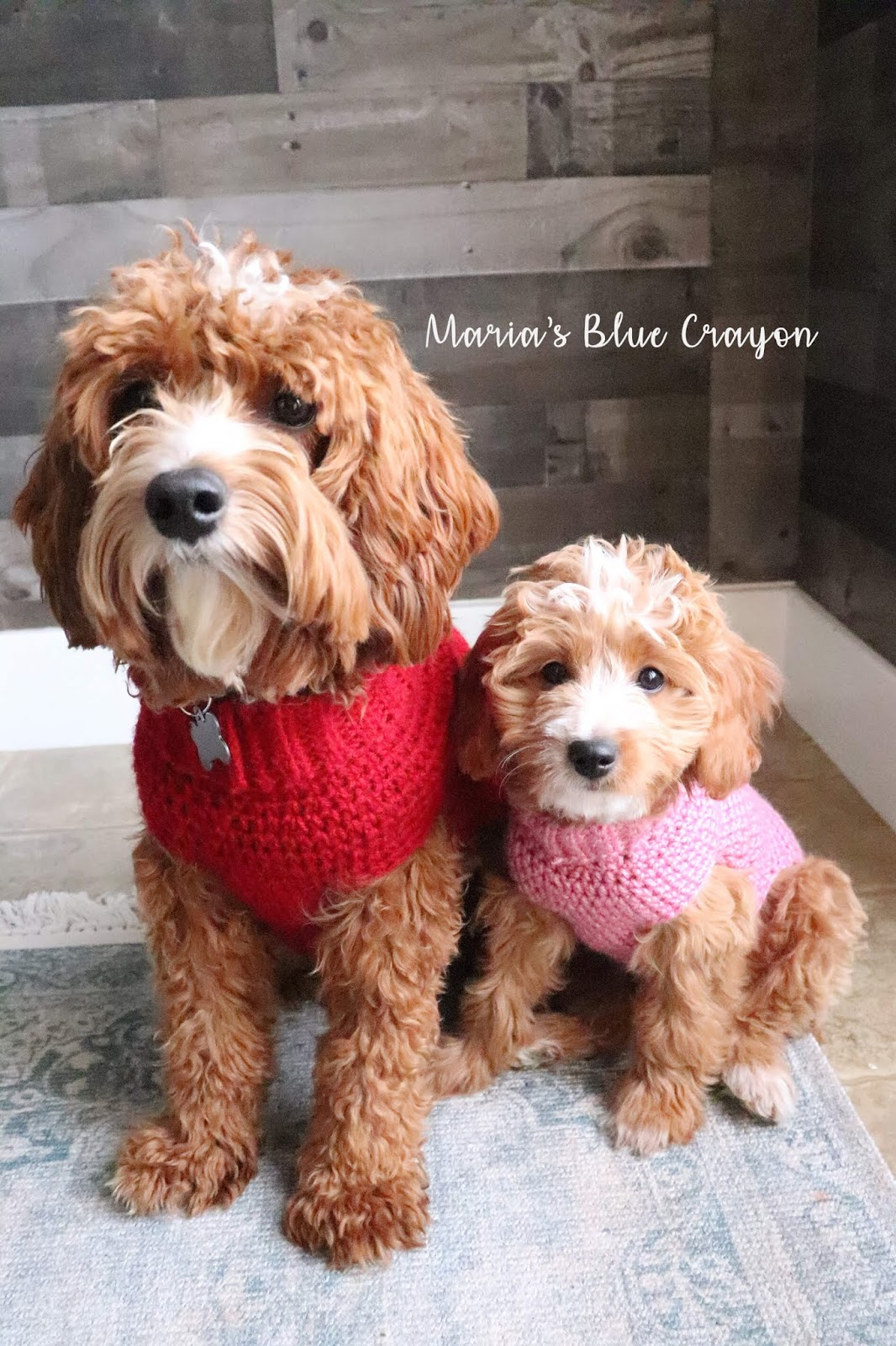 Amigurumi Dogs in Sweaters Free Pattern – Amigurumi Free Patterns ... | 1600x1066