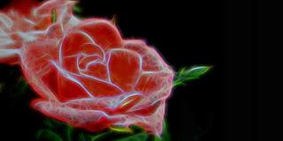 Berkreasi dengan Bunga Menggunakan Teknologi Canggih