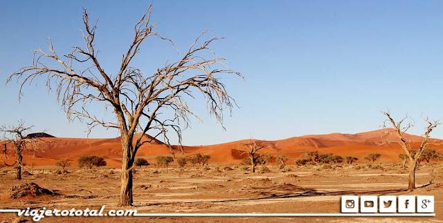 Safari en África - Desierto de Kalahari