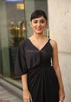 Pooja New Telugu Actress ~  Exclusive 14.jpg