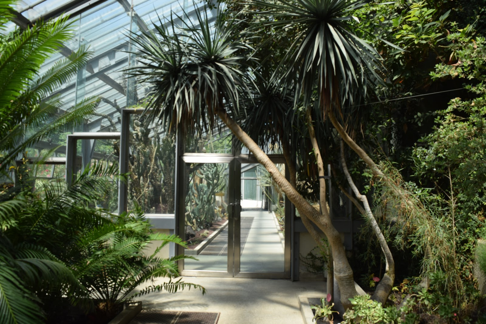 Madrid Botanic Gardens