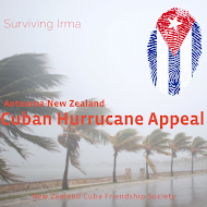 Hurricane Appeal