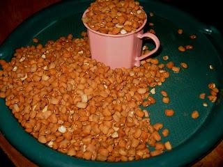 Brown beans for moi moi